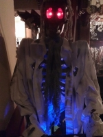 Life Size Skeleton Prop Hire from The Props List